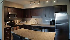 Luxe 1/King St Towers Summer Sublet May - August $450