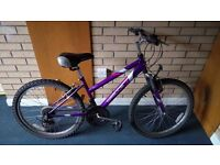 Apollo Envy Mountain Bike - Teen