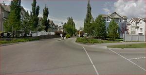 --- Room for rent in West Edmonton --- $500