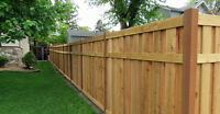Fences- Bryan Baeumler Approved -The Renovators Of Canada