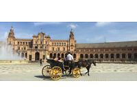 Seville The Heart of Andalucia, Flamenco, Carmen and Passion