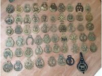 Hugh job lot of vintage horse brasses and other brass ornaments. 69 pieces (birds counted as 3)