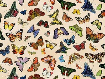 Fat Quarter Schmetterling Garten Schmetterlinge Cream 100% Baumwolle Quilt Stoff ()