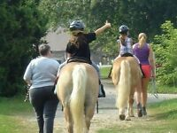 Volunteers Needed for Therapeutic Horseback Riding Program