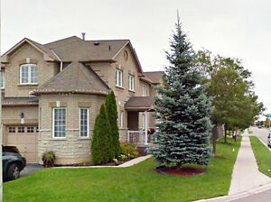 Updated semi house for rent brampton