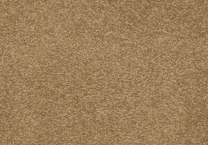 $2.00 Carpet on SALE with FREE installation