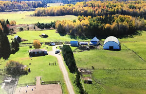 *~15 Acres of Horse Haven* 744 Trunk Road, Rutherglen
