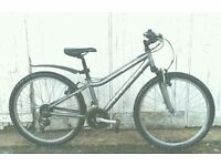Ridgeback MX25 aluminium frame bike