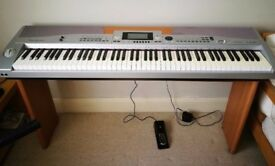 Digital piano, excellent condition, Winchester SP5500 with sustain pedal and USB functionality