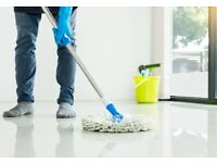 Reliable & hardworking domestic cleaner