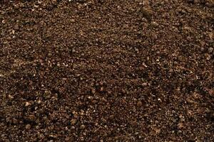 Looking for top soil or clean fill