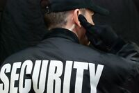 Security for bars/pubs and special events