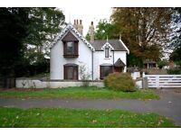 4 bedroom house in York Road, Scawthorpe, DN5