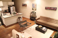 Furnished 1 Bedroom Apartment Available January to March 2016