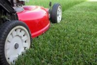 Lawn Mowing - Quality Job at Reasonable Rates