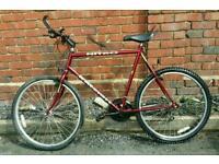 Raleigh Nitro lightweight bike