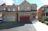 Detached 4 Bedroom House with 1 Bedroom Basement Apartment