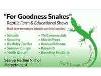 "LIVE REPTILE SHOWS! ""THE ZOO THAT COMES TO YOU"""