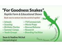 LIVE EDUCATIONAL REPTILE SHOW'S! : THE ZOO THAT COMES TO YOU
