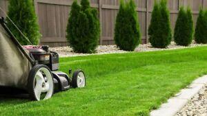Lawn mowing/gardening