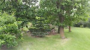 Land For Sale in Roseau River!