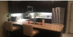 Room mate wanted! Dec 1st Luxury Apartment!
