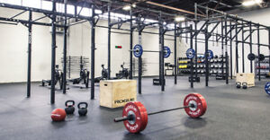 WANTED: ROGUE FITNESS EQUIPMENT