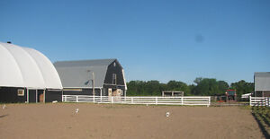 Horse Boarding Available ***Recently Renovated Stable*** Kawartha Lakes Peterborough Area image 6
