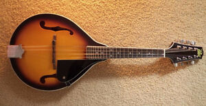 Rogue Mandolin with gig bag