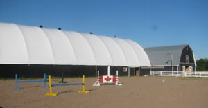 Outdoor/Hybrid Horse Boarding Space Available