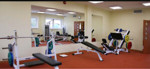 Large mirrors for home gym or riding arenas.