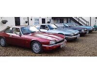 5 X JAGUAR XJS ALL FOR SALE,All in excellent condition.
