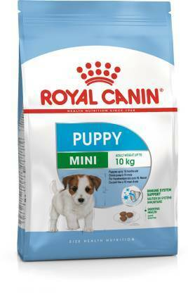mini puppy 4 kg dry dog food