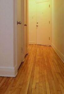 Old Maple flooring (2 inches wide) - NDG house - 100 sqft