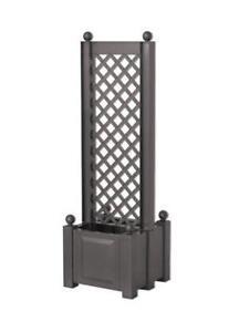 spaliere g nstig online kaufen bei ebay. Black Bedroom Furniture Sets. Home Design Ideas