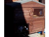 Rabbit or guinea pig hutch double