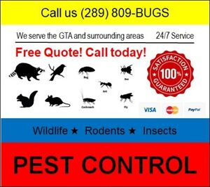 GTA Pest Control ★ Lowest Price Best Results ★