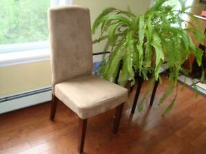 Two Occasional Chairs with High Backs
