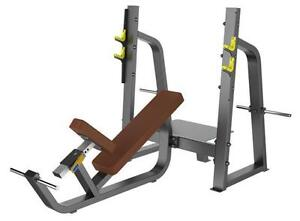 New eSPORT Commercial Incline Bench Press With Spotter Platform & Plate Storage Holders