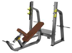 New Olympic Incline Bench Commercial (Flat shipping $250)