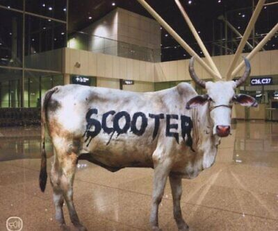 Scooter [maxi-cd] behind the cow (2007)
