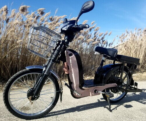Chopstick 48 Volt 500W Electric Bicycle Scooter