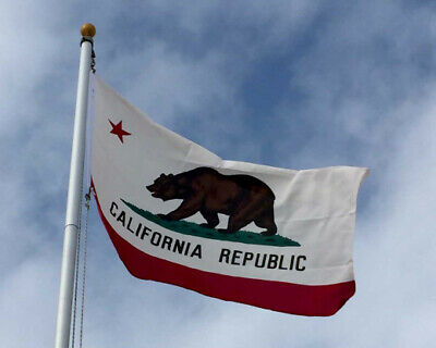 Nylon California State Flag - California Republic State Flag Durable All Weather Nylon Made in USA Mult. Sizes