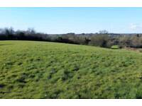 Wanted - grazing land