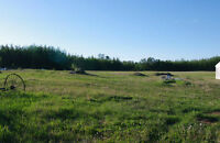Hunting Getaway in Athabasca County