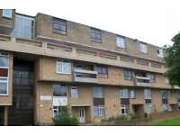 Studio flat in Waterloo Walk, Sulgrave, Washington, NE37