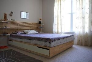 IKEA Mandal Queen bed frame and headboard