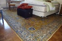 Many Different Rugs