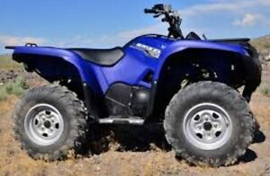 WANTED YAMAHA GRIZZLY 660 or 700
