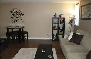 Partially Furnished - Beautiful Downtown Condo - PETS ALLOWED